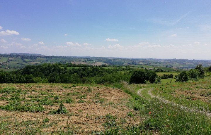 Panoramic land for new building